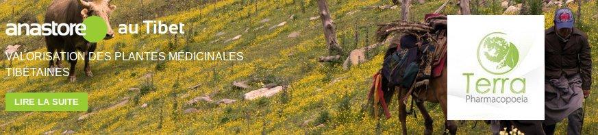 Anastore utilise une agriculture biologique au Tibet en suivant une politique écologique et éthique