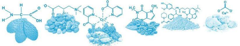 ingredienti naturali di alta qualità per indirizzare la perdita di peso
