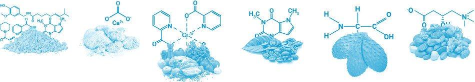 hochwertige natürliche Inhaltsstoffe in PhenQ, die Gewichtsverlust abzielen