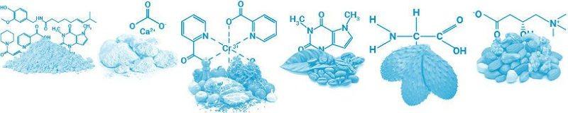 ingredientes naturais de alta qualidade para apontar a perda de peso