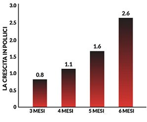 Risultati sugli effetti di Extra maschio durante i primi mesi dopo l'uso