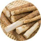 Extrait de bardane est un ingrédient naturel pour détoxifier le corps et le purifier